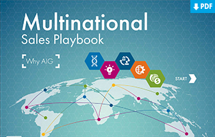 Multinational Sales Playbook