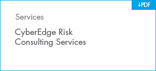 CyberEdge Risk Consulting Services