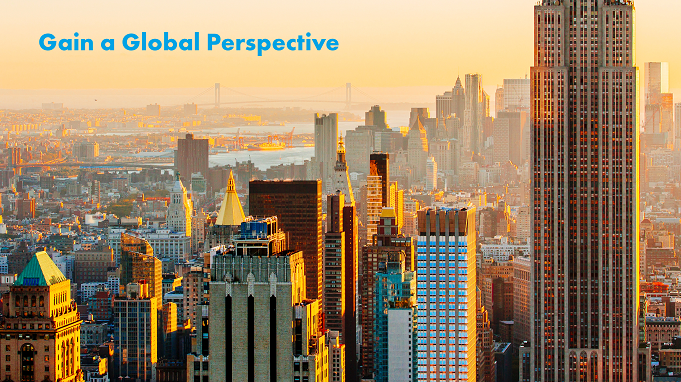 Link to Gain a Global Perspective at AIG