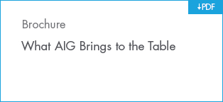 Download What AIG Brings to the Table